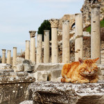 Ephesus_IMG_9063